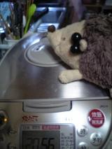 炊飯器があたいを襲うのよ!