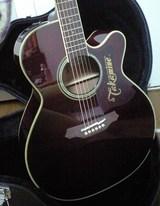 GOW guitar