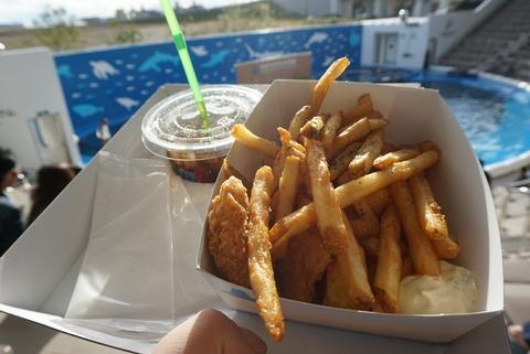 【仙台】カバナ【仙台うみの杜水族館でサメ肉が食べれちゃう!シャークナゲットがオススメ♪】