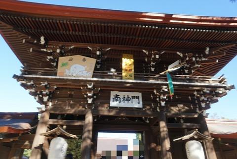 【原宿】明治神宮【初詣日本一の参拝者数!!人気のパワースポット!】