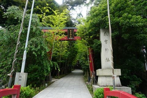 【熱海】来宮神社【インスタ映えで話題の神社はデートにオススメ♪】