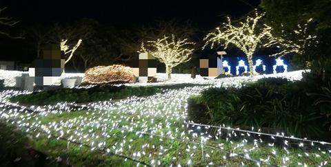 【江ノ島】亀ヶ岡広場【無料で見れちゃう!イルミネーションがプチプラデートにオススメ!】