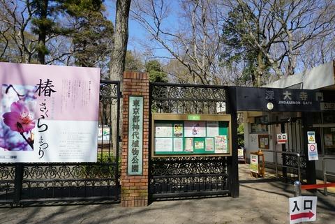 【調布】神代植物公園【5月のバラ園はおすすめ♪かなり広い敷地です】