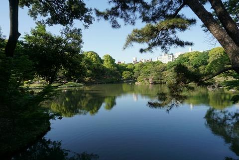【駒込】六義園【都会の喧騒を忘れたい時にオススメ!緑に癒される素敵な庭園でホッと一息】