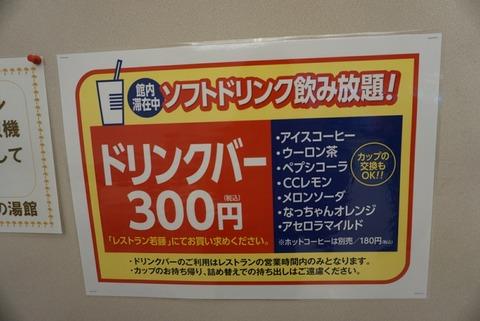 DSC07195