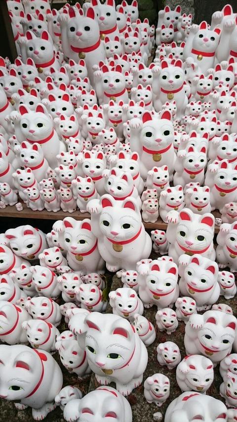 【豪徳寺】豪徳寺【招き猫発祥の地に訪問♪招き猫の量に圧倒されました!】