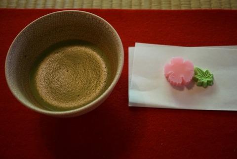 【駒込】旧古河庭園・日本庭園内 茶室【和を感じる癒しの一時は現代社会に疲れた方にこそオススメです!】