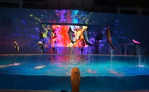 【八景島】ナイトショー「LIGHTIA」【プロジェクションマッピングを駆使したイルカショーが凄い!】