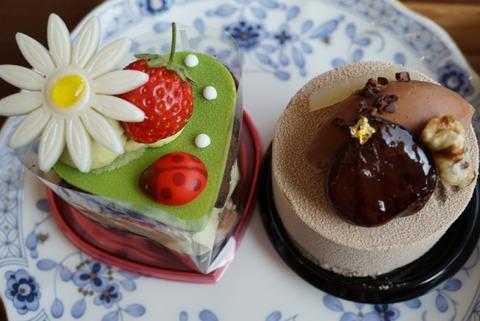 【梅島】ラヴィアンレーヴ【フォトジエニックで女子ウケ抜群の可愛いケーキは見た目以上に美味しかった♪】