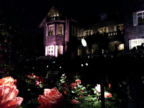 【駒込】旧古河庭園【バラフェスティバル直前訪問!満開のバラはどう撮っても絵になるほど美しい!】