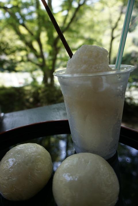 【沢井】澤乃井園 清流ガーデン【デートにオススメ♪多摩川沿いの人気観光スポットで甘酒かき氷を堪能♪】】