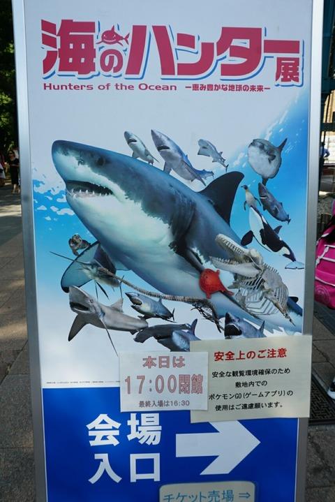 【上野】海のハンター展【国立科学博物館にて2016年7月8日から10月2日まで開催♪】
