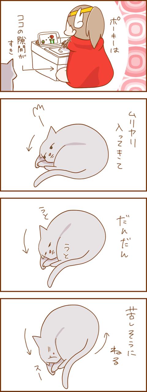 IMG_3424