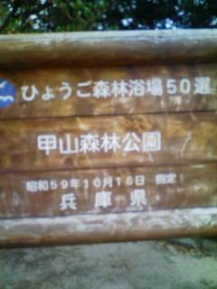 3704df94.jpg