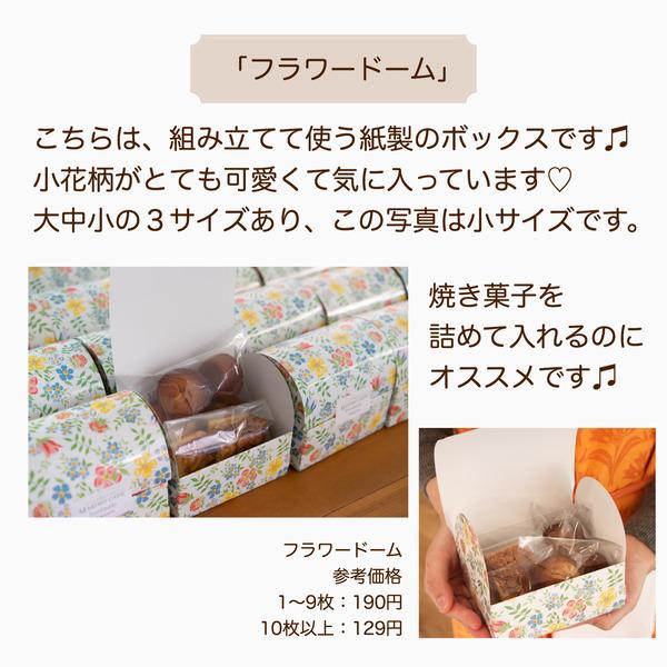 IMG_9419