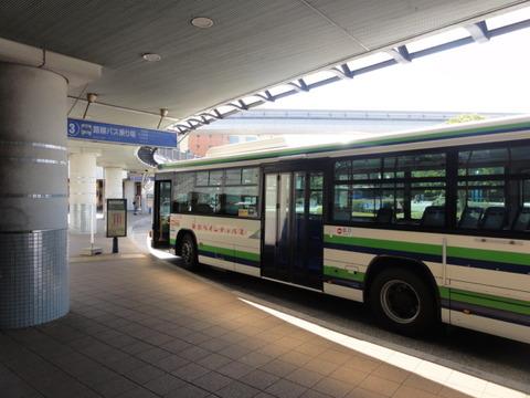 DSC00595