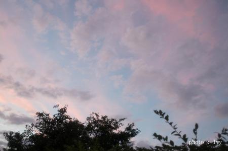 パステルカラーに染まる空