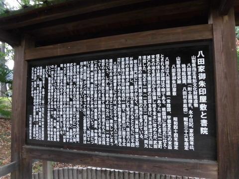 CIMG3494