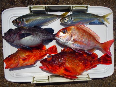 2015.04.12 Fishing-05