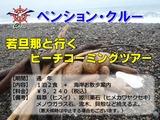 11.12.10-0 ビーチコーミング(小)