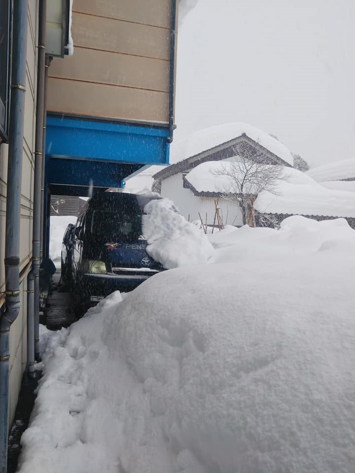 2021年1月大雪 (25)