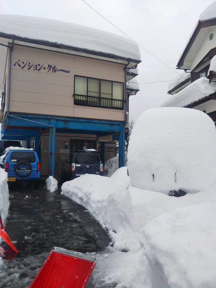 2021年1月大雪 (28)