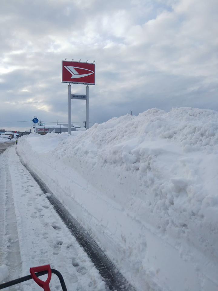 2021年1月大雪 (20)