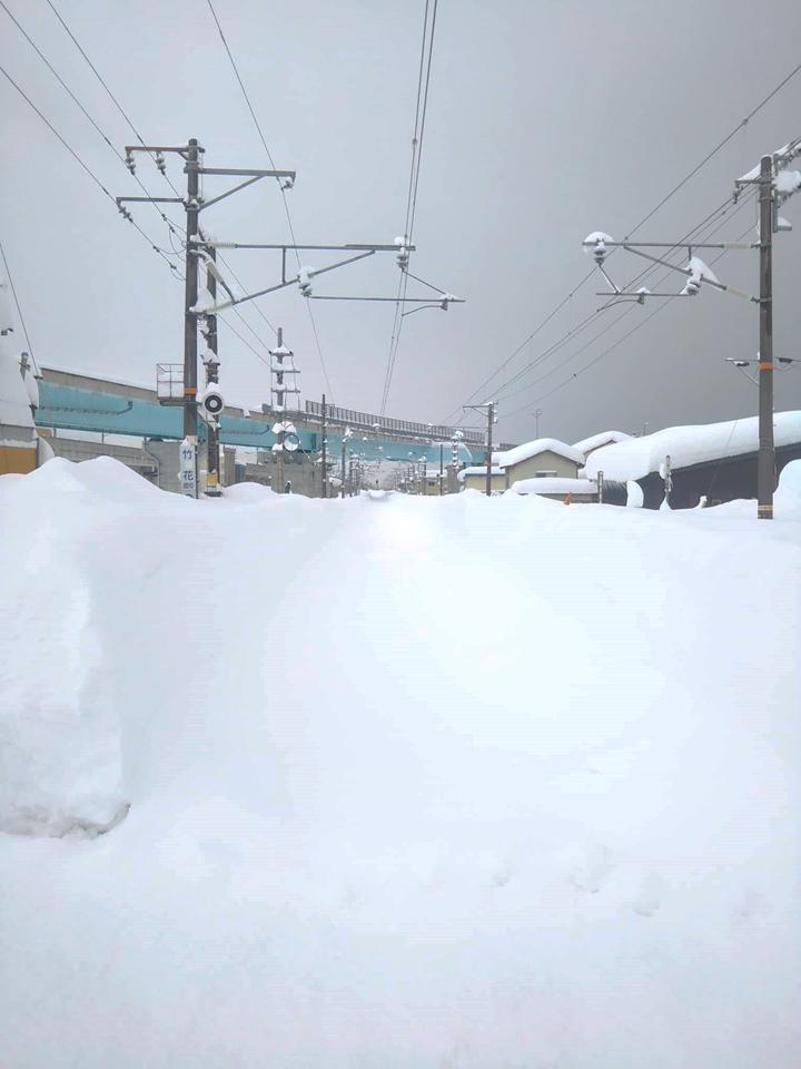 2021年1月大雪 (30)