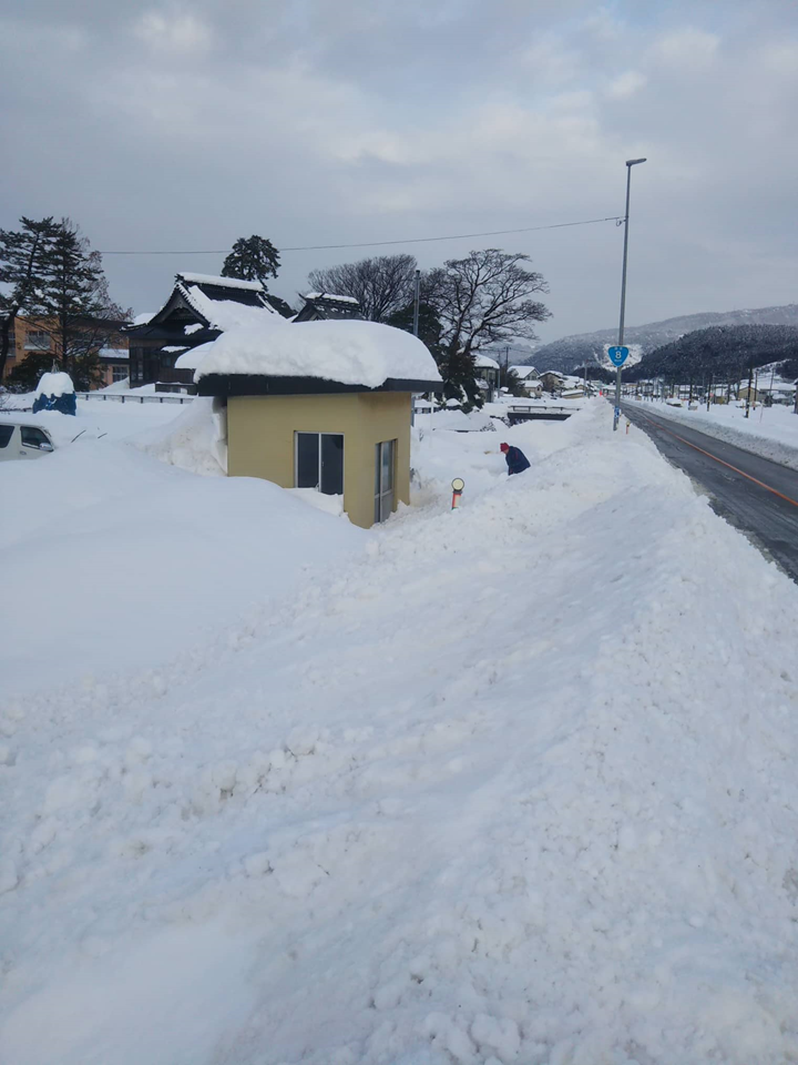 2021年1月大雪 (26)