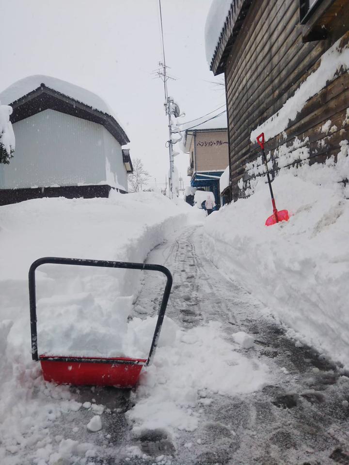 2021年1月大雪 (14)