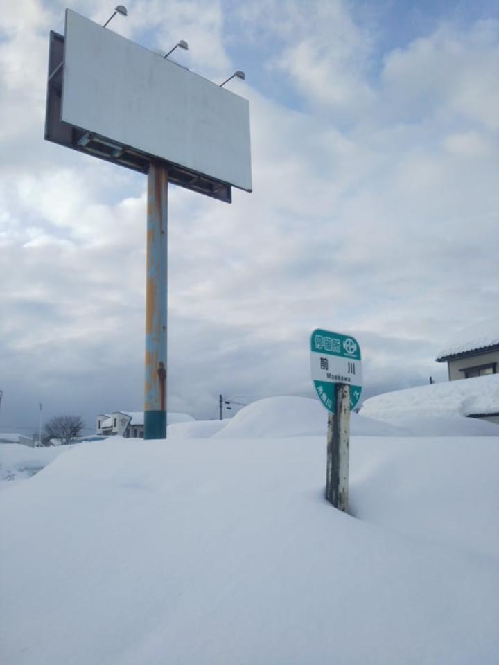 2021年1月大雪 (19)