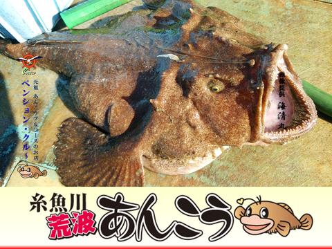 2016 鮟鱇料理�-05