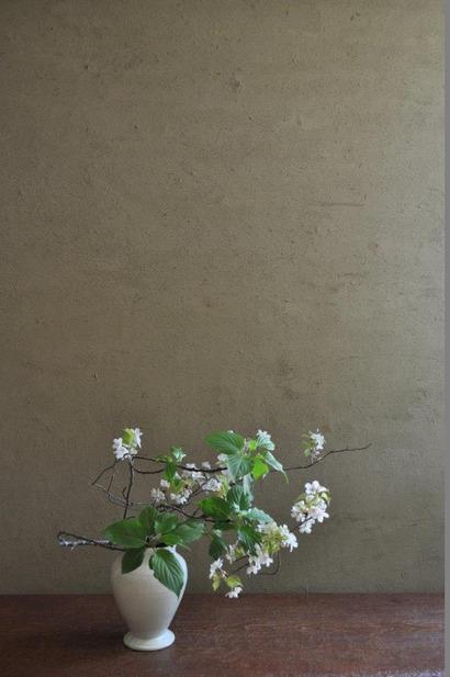 山桜/木五倍子