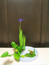 写景盛花様式本位−杜若の三種いけ