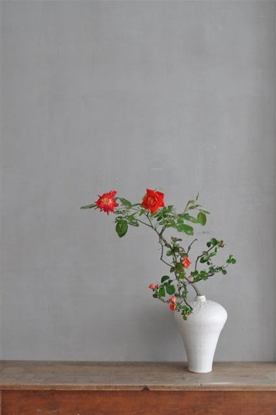 山野邊孝さん × 枝薔薇・木瓜