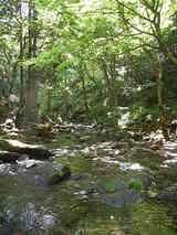 河原 in 福島