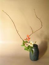 西大由×木瓜・薔薇