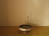 蔓梅擬×高岡太郎