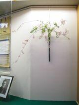 内田鋼一×桜、小手毬