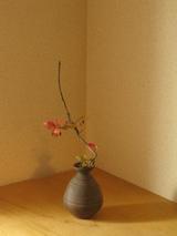 紅葉錦木×相馬正和