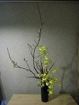 花をはじめて16ヶ月