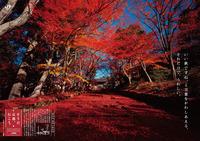 2011_autumn