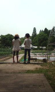 201005221322nannpa