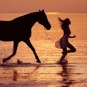 HORSE 0510 LADY 夕日 海