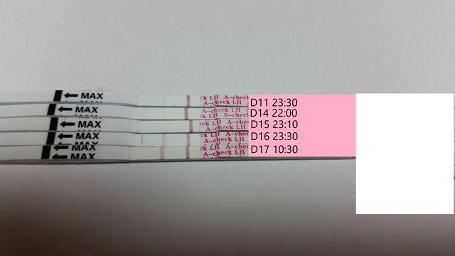 排卵 検査 薬 比較