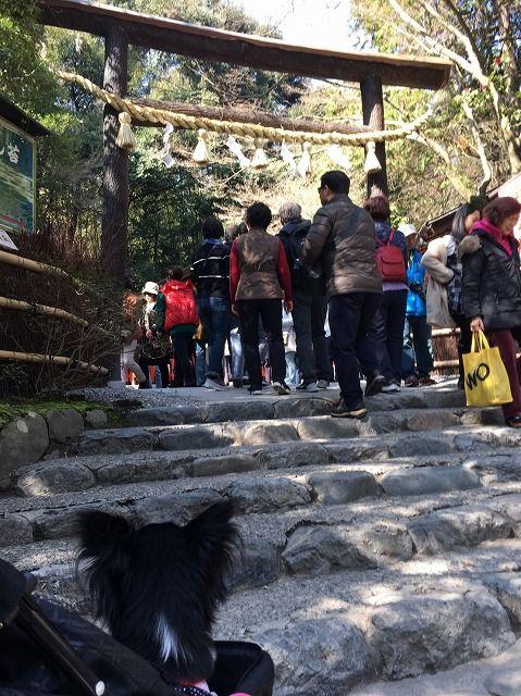 京都旅_50