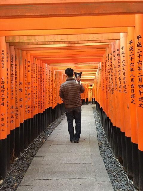 京都旅_20