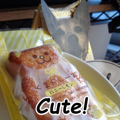 かわウマイ菓子