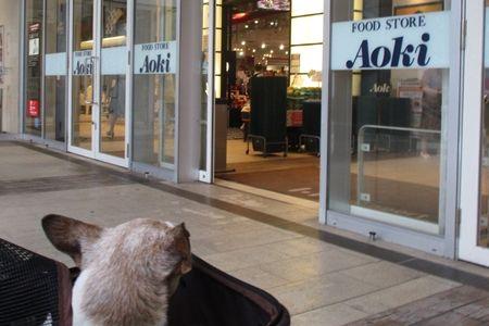 おかあさまは今、買い物中です