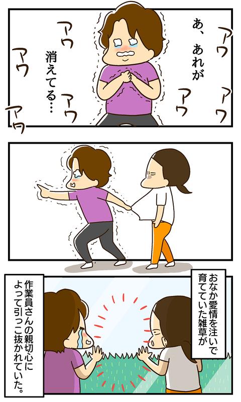 20200601-雑草その後02